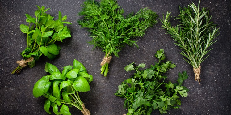 Read more about the article Cultivez des herbes aromatiques pour vos Barbecues…